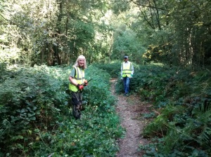 volunteers clearing bridleway
